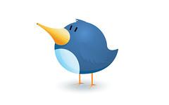 eliminar la celulitis en Twitter