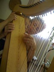 string instrument, clãrsach, folk instrument, harp, string instrument,