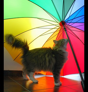 Have a really nice holiday and I hope you don´t have to use an umbrella !!