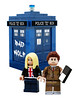 10 - Rose  + Tardis: http://lego.cuusoo.com/ideas/view/16291