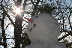 20090207 - Snowman