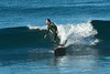 Surfing - Jim Pickell Pastura 7