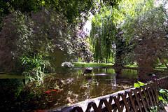 Nature Czech