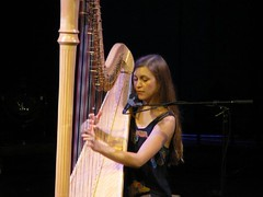 bowed string instrument, classical music, string instrument, clã rsach, music, harp, string instrument,