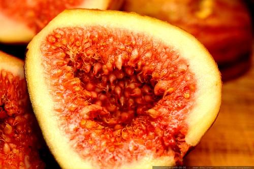 sliced fig macro    MG 5041