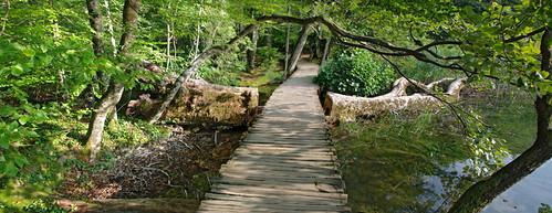 park wood panorama tree green water fairytale creek forest waterfall path pano lakes like croatia national fallen boardwalk stitched plitvice greatnature plitvičkajezera jpingjk