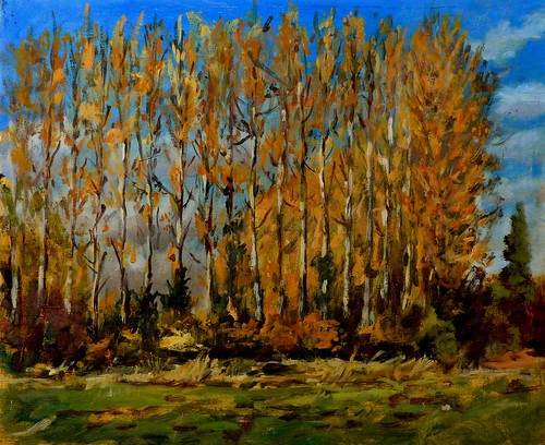 Autumn Poplars - Black Dog crossroads