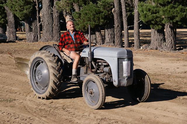 T20 Ferguson Tractor : T ferguson tractor flickr photo sharing