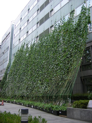 Green Curtain, Suginami Ward Office