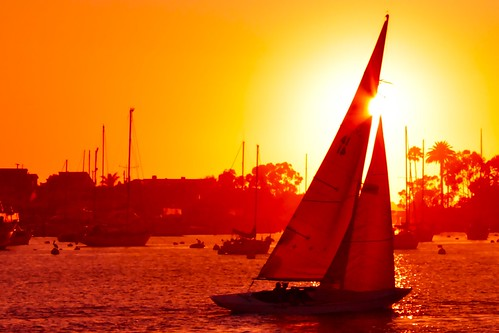 california sunset sky orange sailboat boats harbor sailing palmtree balboa 41 balboaisland kennelly