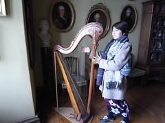 harp, string instrument,