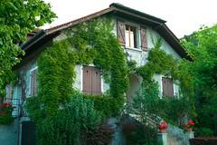 日内瓦(Geneve)