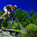 Individual Mountain Biking