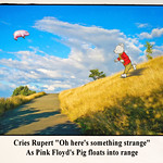 Competition #54 - Calton Hill - Rupert and the Flying Pig
