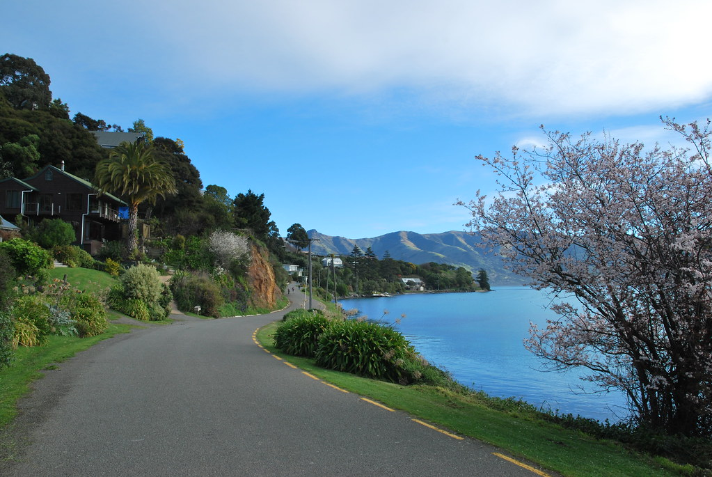 Akaroa - Banks Peninsula - South Island - New Zealand