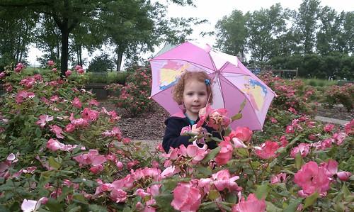 pink flowers umbrella princess rainy evansville sunrisepark