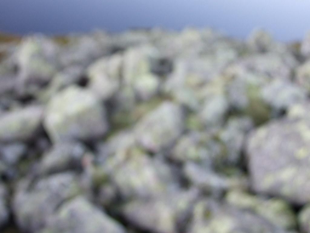 blur landscape 6