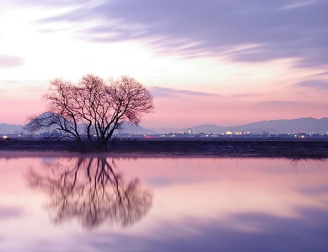Biwa Lake,Japan.