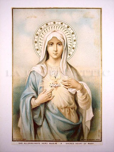~The Immaculate Heart~
