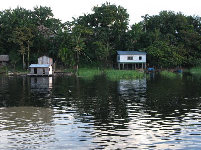 Amazon houses