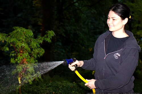 gardener in chief, watering her ferns, japanese maple & sequoia trees    MG 9413