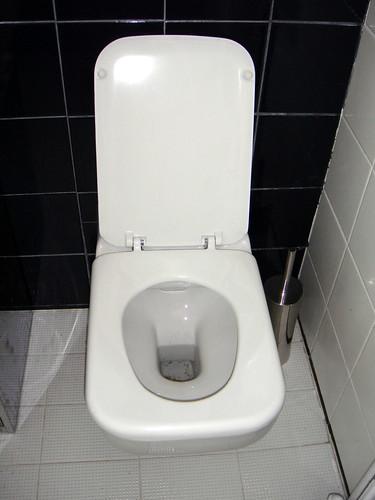 the new toilet bowl