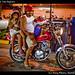 Family motor, Isla Mujeres