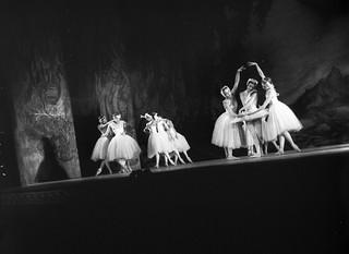 Royal Ballet's Swan Lake at the Empire Theatre, Sydney, 10 September 1958 / photographer Ken Redshaw