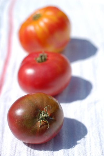 Tomatoes from Eatwell Farm