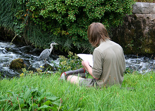 Sketching the heron
