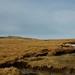 Small photo of Summit of Foel Fras Carneddau, Snowdonia