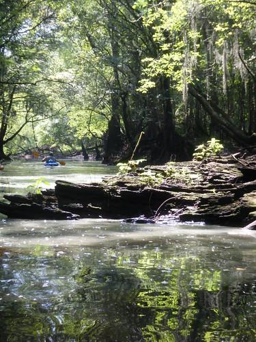 river kayaking paddling edisto lowcountryunfiltered