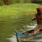 Rowing Home - Kerala Backwaters, India