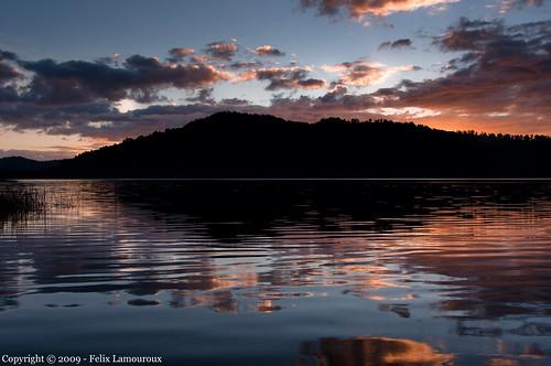 newzealand nature southisland westcoast