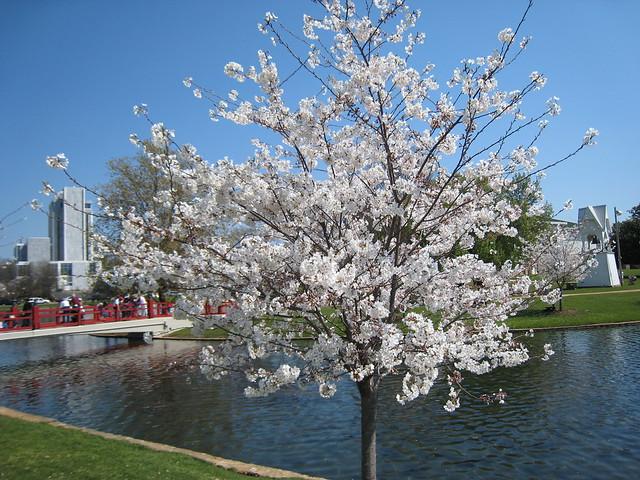 Big Spring Park - Springtime 2009 | Flickr - Photo Sharing!