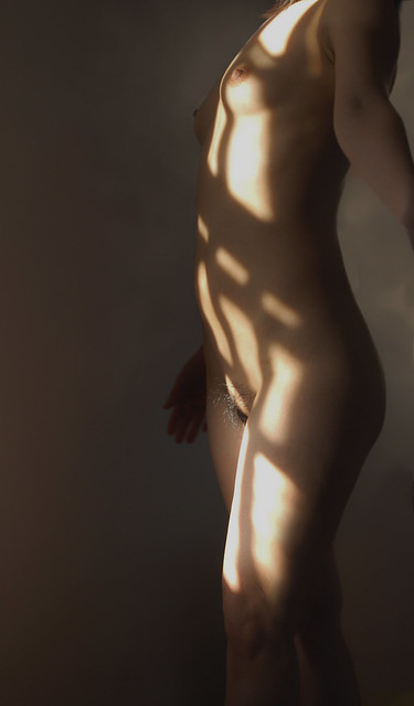 nude in sunlight (2006)