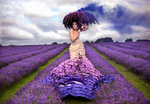 Wonderland : The Lavender Princess