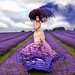 Wonderland : The Lavender Princess by Kirsty Mitchell