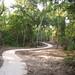 newport trail