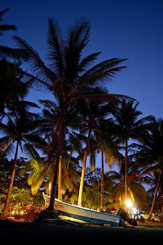 ocean sunset costa seascape tree beach boat costarica pacific playa rica palm pacificocean peninsula samara nicoya playasamara