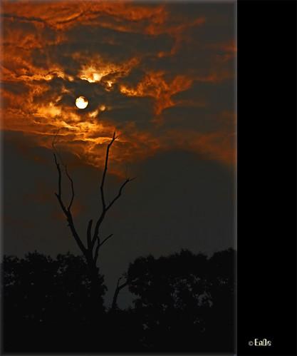 (0084) Sonne in der Nacht - Sun at night by EnDe53