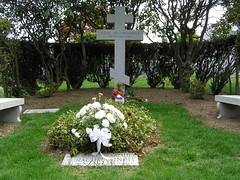 cemetery, shrub, flower, landscaping, grave,