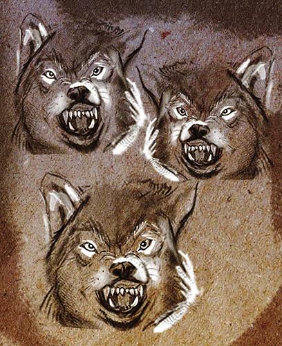 Wolf x3