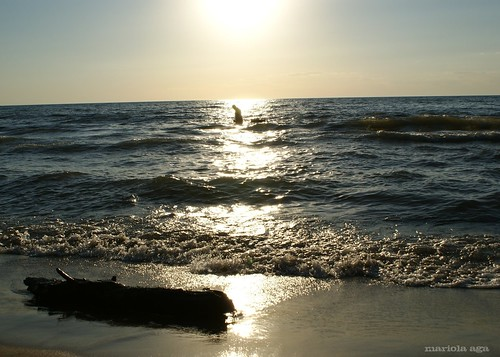 light sunset summer sky sun lake man beach water silhouette backlight michigan lakemichigan driftwood thegalaxy