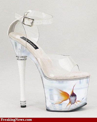 Fish tank shoes flickr photo sharing for Fish tank shoes