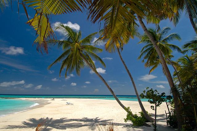 Beach, Vilu Reef