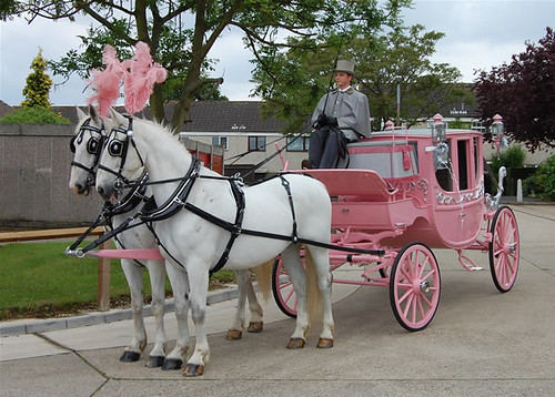 Pink Horsedrawn Carriage for Pink Weddings