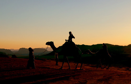 sunset tour camel jordandesertmiddleeast约旦沙漠camels