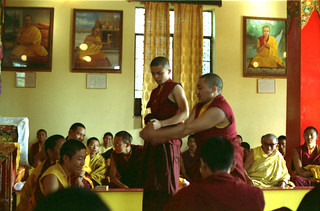 Tibetan Buddhist monks in exile debating, Sakya College, Rajpur, Dehradun, UP, India, in 1993 (for Dagchen Sakya and Sakya Trizin out of the frame to the left)