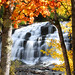 Bond Falls Autumn Leaves Landscape